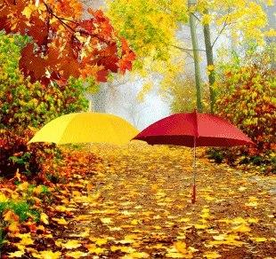 Психологическая и духовная поддержка на ноябрь 2012 года