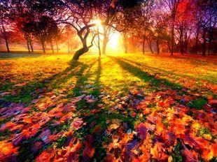 Психологическая и духовная поддержка на ноябрь 2013 года