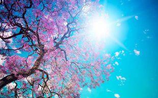Психологическая и духовная поддержка на апрель 2015 года