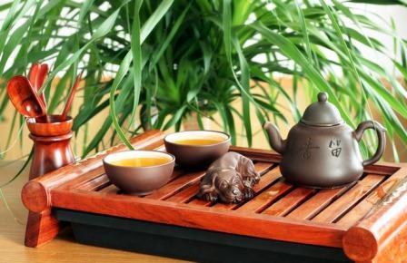 Чайная терапия с Татьяной Шаповаловой. Зеленый весенний чай